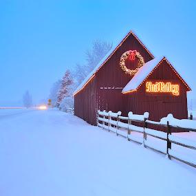 Sun Valley Barn in snow storm by Tory Taglio - Landscapes Weather ( idaho, baldy, winter, tory taglio, snow, twilight, ketchum, pwcstorm, sun valley, sun valley barnsun valley )