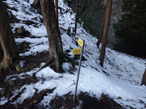 巡視路分岐(左のR170へ)