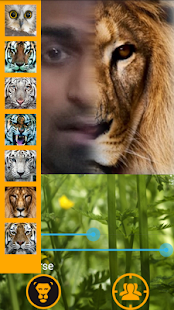Animal Face Changer - Morphing screenshot
