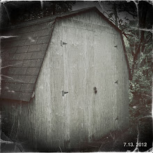 Photo: Old barn type shed. Soon to be my studio.