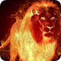 Fire Wallpaper – Fire Lion Backgrounds icon