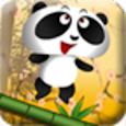 Yup! Flying Floppy Panda 2018 icon