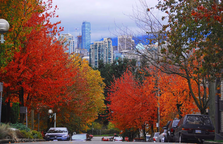 A view of the Vancouver skyline in the autumn.