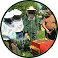 beekeeper file APK for Gaming PC/PS3/PS4 Smart TV