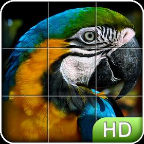 Пазл HD: Птицы