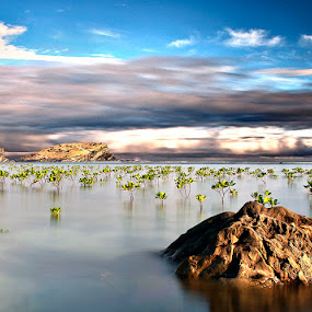 by Rene Sangco - Landscapes Waterscapes