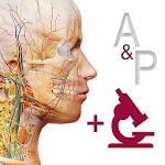 Anatomy & Physiology 6.0.71 (Paid)