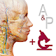 Anatomy & Physiology for PC