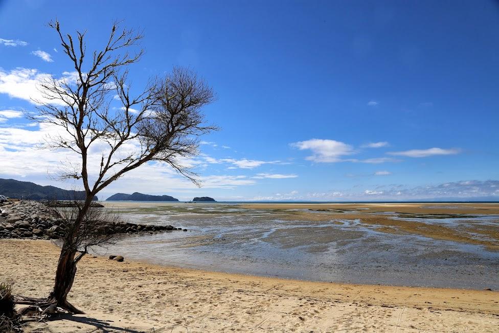 Zatoka Tasmana
