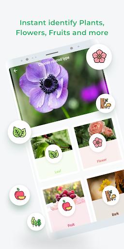 LeafSnap screenshot 3
