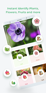 LeafSnap – Plant Identification 3