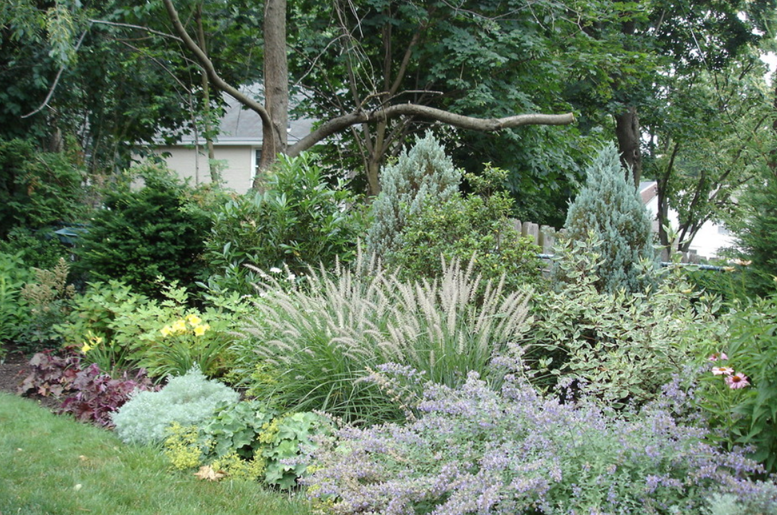 Bright and colorful perennial landscape arrangement