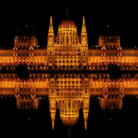 Parliament  by Milan Milosevic ヅ - Buildings & Architecture Other Exteriors ( pwcarcreflections, hungary, parliament, reflection, building, budapest, night pictures, night, danube river, river, landmark, travel, lights )