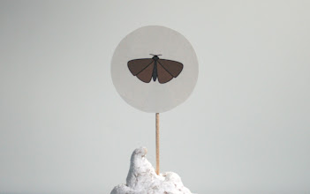 Photo: Moth topper from insects set