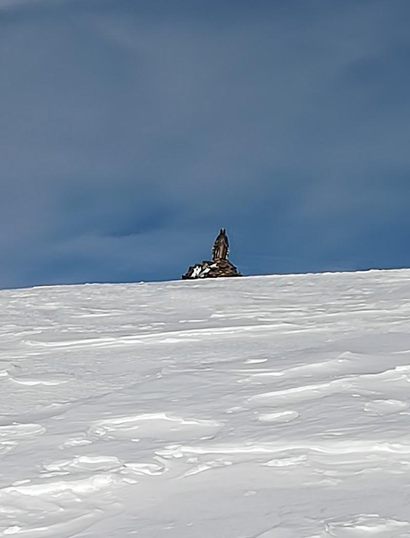Spunta dalla neve...  di Robyvf