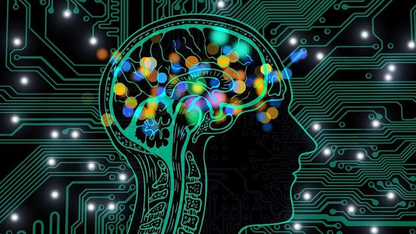 Estando ociosos nuestro cerebro será capaz de revertir, al menos de forma temporal, los efectos negativos de estar estresados.