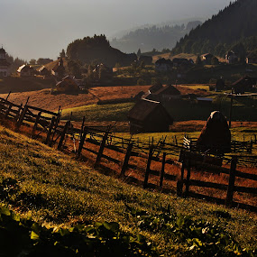 Morning in Fundata by Nicu Buculei - Landscapes Mountains & Hills ( mountains, hills, dawn, village, morning,  )
