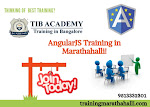Best AngularJS Training Institutes in Marathahalli Bangalore