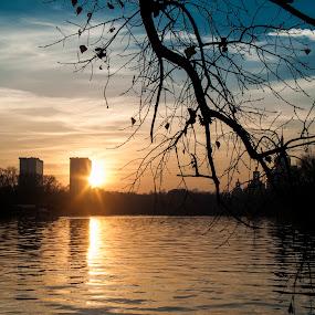 by Vagabond Foto - City,  Street & Park  City Parks