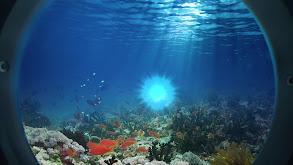Underwater Worlds thumbnail