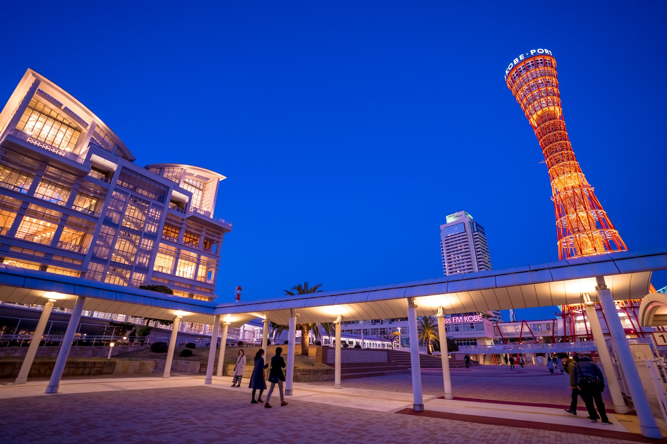 Kobe Bay area Meriken Park evening view5