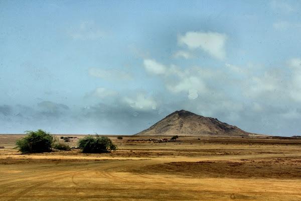 african landscape di smpaint