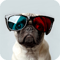 Pug Dog Pack 3 Live Wallpaper icon