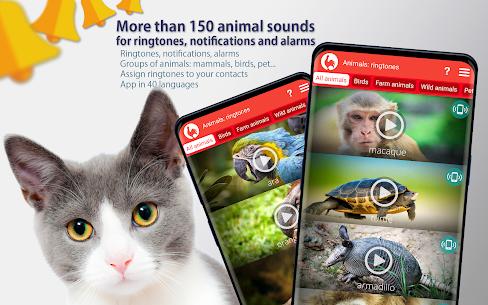 Animals: Ringtones 8