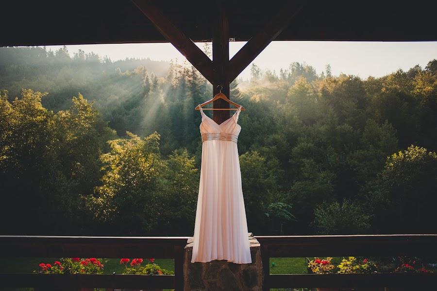 Wedding photographer Aleksandr Medvedenko (Bearman). Photo of 26.08.2014