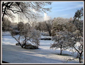 Photo: Im Winter für Sie präsent in Königswinter.