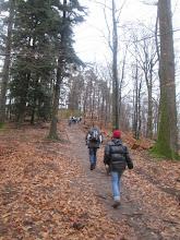 Photo: Hochkopf Alt. : 429 m