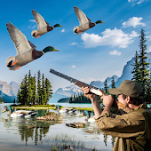 Tải Duck Hunting Adventure APK