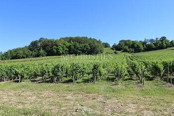 terrain à Castillon-la-Bataille (33)