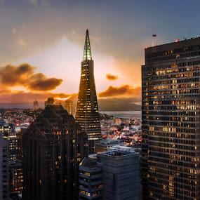 Sunset Lights by Artem Kevorkov - City,  Street & Park  Neighborhoods ( clouds, financial, lights, financial district, sunset, california, san francisco )