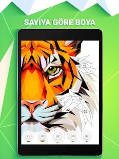 Polygon Sayiya Gore Renk Oyunu Mobil Uygulama Incele