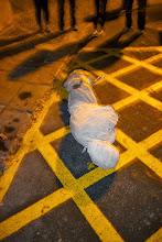 Photo: Local roadkill