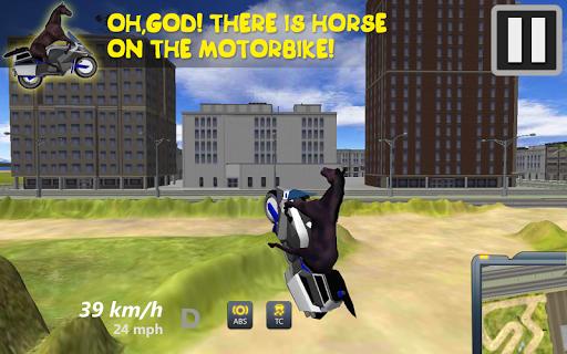 Horse On Motorbike