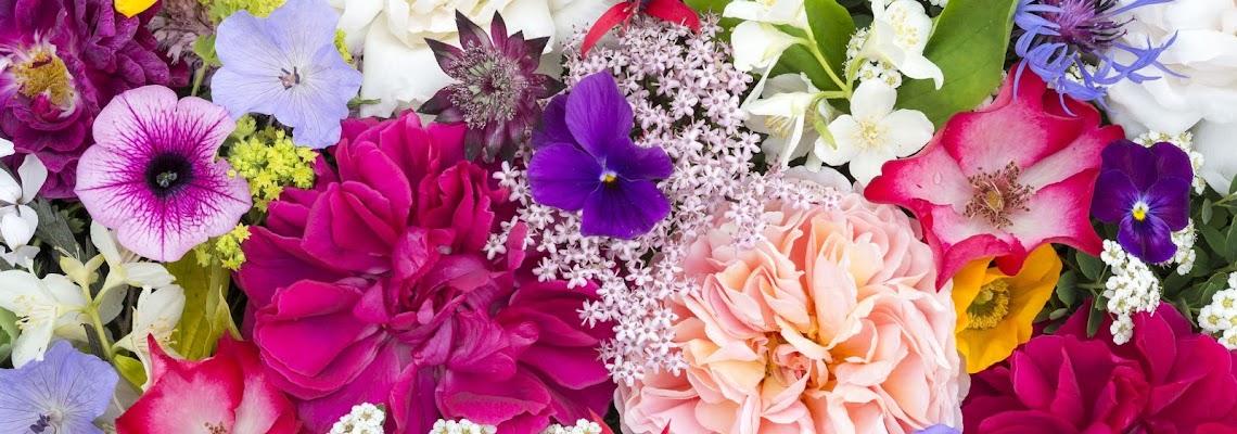 floristui
