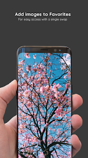 Spring Wallpapers 4K PRO 🌹 HD Backgrounds Screenshot