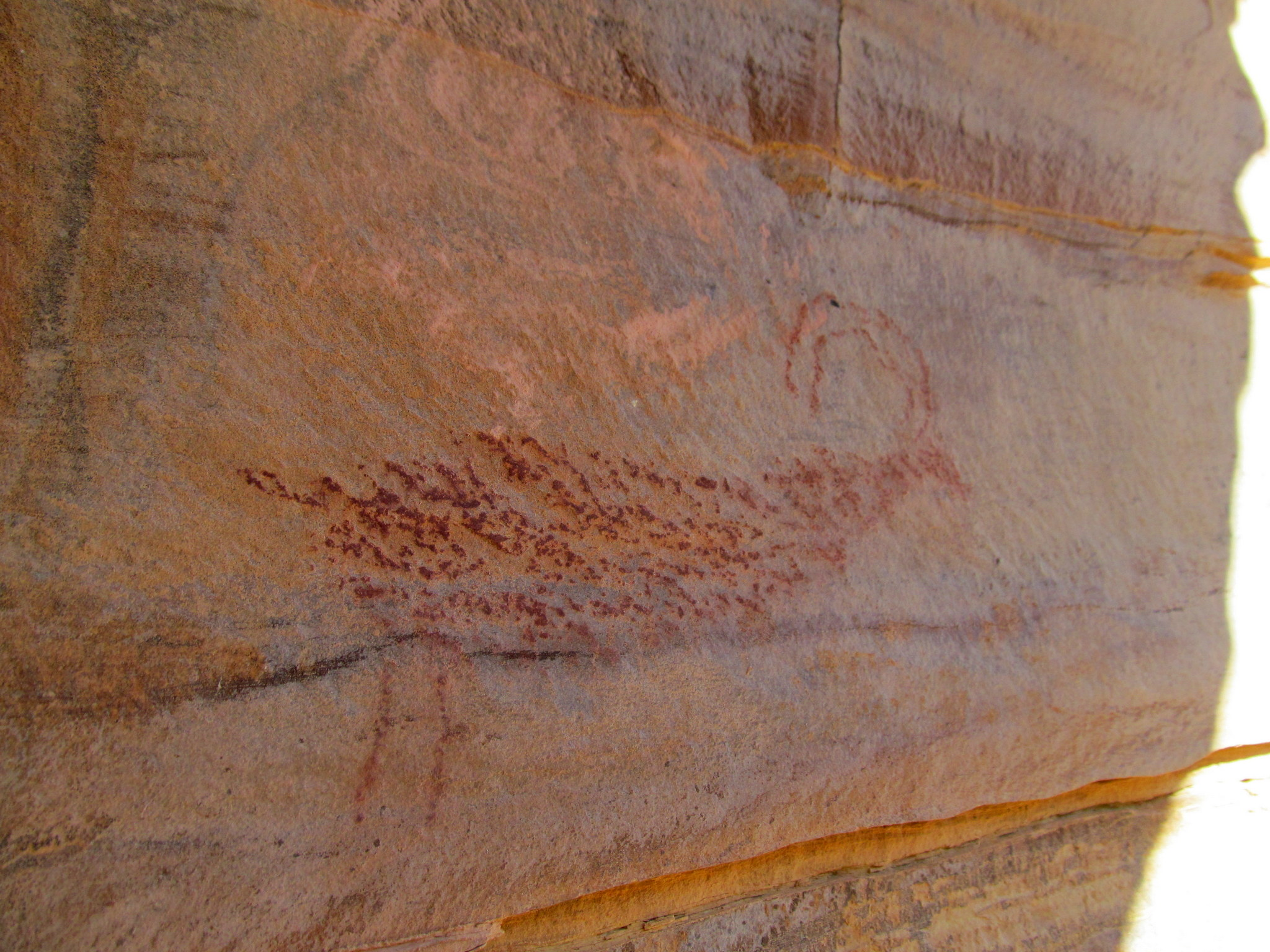 Photo: Bighorn sheep pictograph