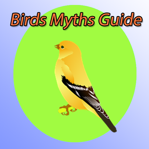 Birds in Myths Guide
