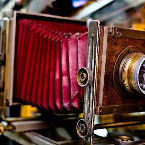 Large-format camera by Wilfredo Garrido - Artistic Objects Antiques ( camera, objects, large-format camera, antiques )
