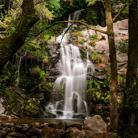 Cascata de seda by Carlos Costa - Landscapes Mountains & Hills ( water, mountain, tree, pool, green, waterfall, trees, lake, portugal, rocks, natural,  )