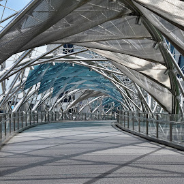 by Koh Chip Whye - Buildings & Architecture Bridges & Suspended Structures (  )