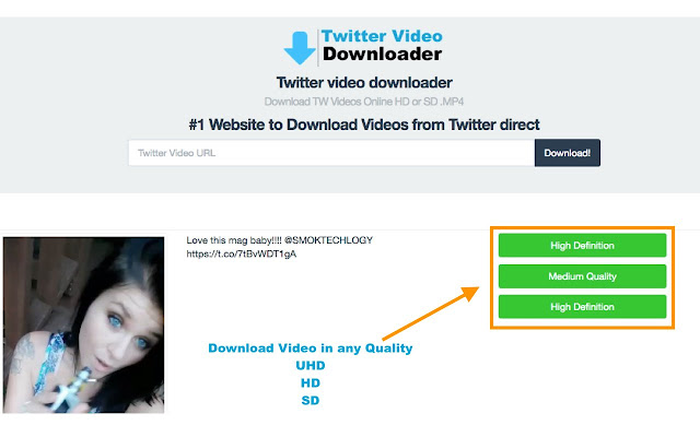 download videos from online chrome