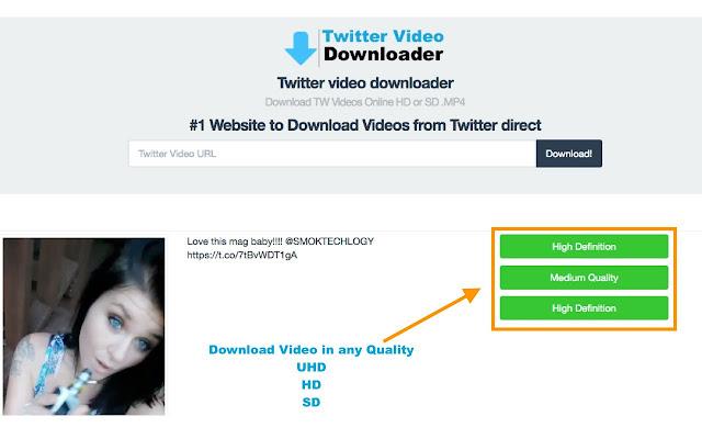 download video twitter online