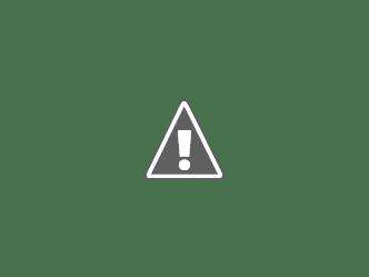 Andare verso.     Loredana Galante e Saba Zahra Najafi Testo di Alessandra Redaelli