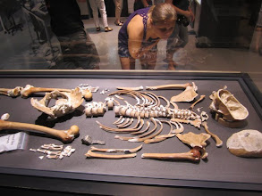 Photo: Forensic anthropology exhibit at the Smithsonian.