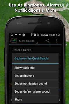download gecko tuko sounds free apk latest version app for android