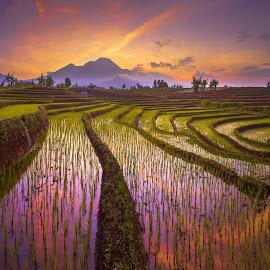 miss you summer season by Rahmad Himawan - Landscapes Sunsets & Sunrises ( sky, sunrise, mountain, nature, asia, indonesia, landscape,  )